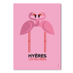 Flamands roses roses- affiche